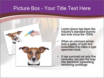 0000082318 PowerPoint Template - Slide 20