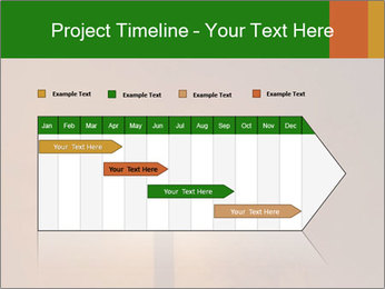 0000082320 PowerPoint Templates - Slide 25