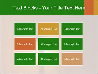 0000082320 PowerPoint Templates - Slide 68