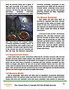 0000082320 Word Template - Page 4
