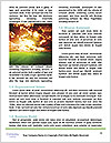 0000082326 Word Template - Page 4