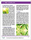 0000082331 Word Template - Page 3