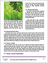0000082331 Word Template - Page 4