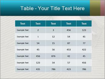0000082332 PowerPoint Templates - Slide 55