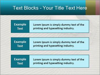 0000082332 PowerPoint Templates - Slide 58