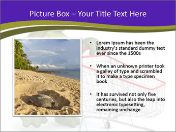 0000082335 PowerPoint Templates - Slide 13