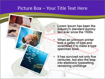 0000082335 PowerPoint Templates - Slide 17