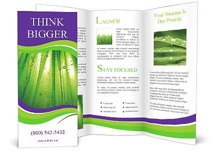 0000082337 Brochure Template