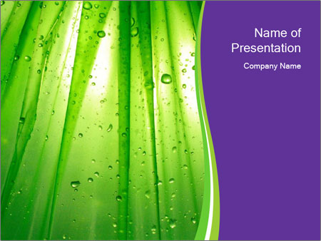 0000082337 PowerPoint Templates