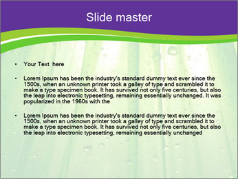 0000082337 PowerPoint Template - Slide 2