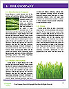 0000082337 Word Templates - Page 3