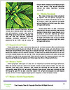 0000082337 Word Templates - Page 4