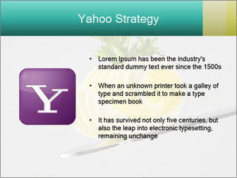 0000082339 PowerPoint Template - Slide 11