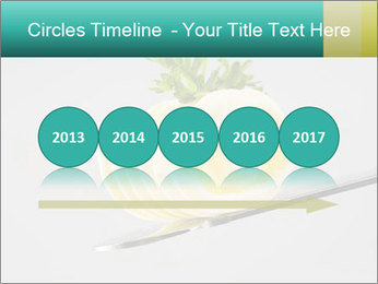 0000082339 PowerPoint Template - Slide 29