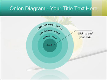 0000082339 PowerPoint Template - Slide 61