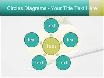 0000082339 PowerPoint Template - Slide 78