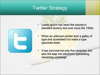 0000082339 PowerPoint Template - Slide 9