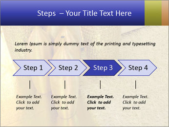 0000082342 PowerPoint Template - Slide 4