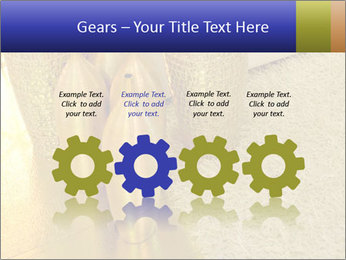 0000082342 PowerPoint Template - Slide 48