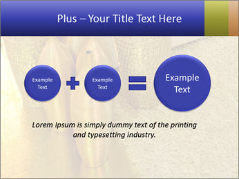 0000082342 PowerPoint Template - Slide 75