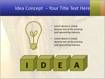 0000082342 PowerPoint Template - Slide 80