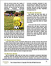 0000082345 Word Template - Page 4
