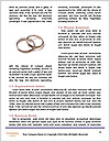 0000082348 Word Templates - Page 4