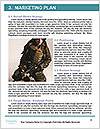 0000082351 Word Template - Page 8