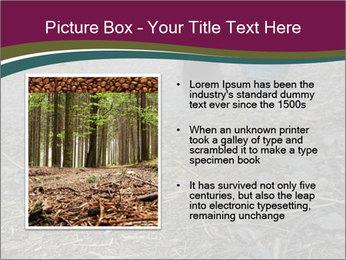 0000082356 PowerPoint Template - Slide 13