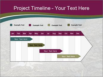 0000082356 PowerPoint Template - Slide 25