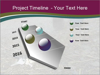 0000082356 PowerPoint Template - Slide 26