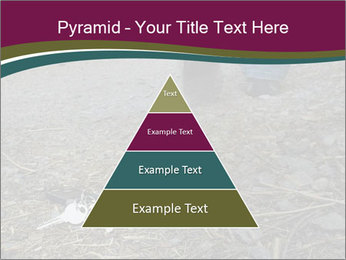 0000082356 PowerPoint Template - Slide 30