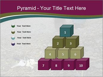 0000082356 PowerPoint Template - Slide 31