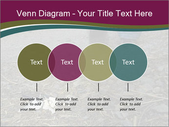 0000082356 PowerPoint Template - Slide 32