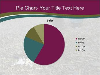 0000082356 PowerPoint Template - Slide 36
