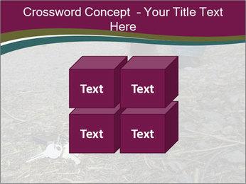 0000082356 PowerPoint Template - Slide 39