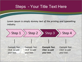 0000082356 PowerPoint Template - Slide 4