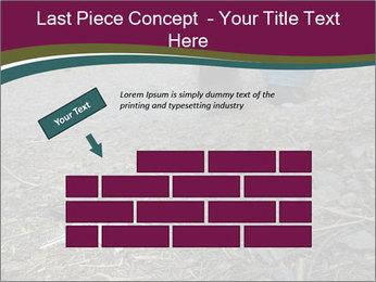 0000082356 PowerPoint Template - Slide 46