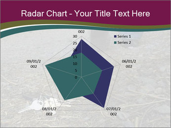 0000082356 PowerPoint Template - Slide 51