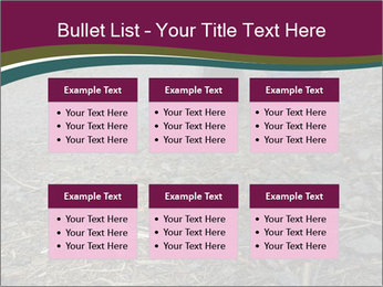 0000082356 PowerPoint Template - Slide 56