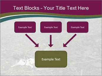 0000082356 PowerPoint Template - Slide 70