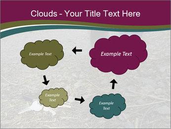 0000082356 PowerPoint Template - Slide 72