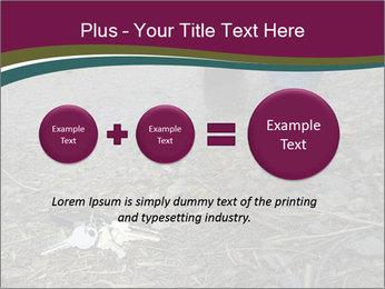 0000082356 PowerPoint Template - Slide 75