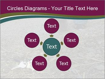 0000082356 PowerPoint Template - Slide 78