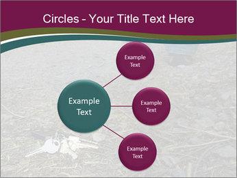 0000082356 PowerPoint Template - Slide 79