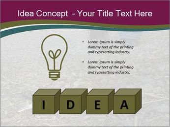 0000082356 PowerPoint Template - Slide 80
