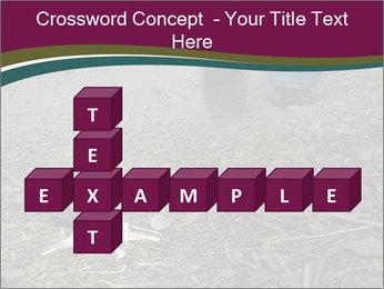 0000082356 PowerPoint Template - Slide 82
