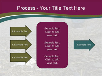 0000082356 PowerPoint Template - Slide 85