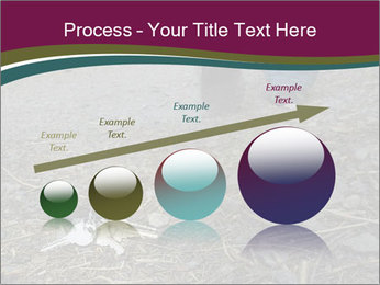 0000082356 PowerPoint Template - Slide 87