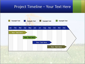 0000082359 PowerPoint Templates - Slide 25